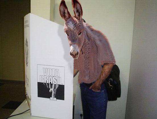 burro_vota.0